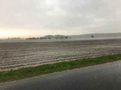 Så fik vi endelig regn, kunne dog godt lige falde lidt langsommer :-)